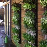Модули для вертикального озеленения